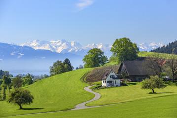 Wall Mural - idyllische Landschaft am Bodensee