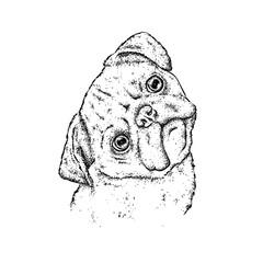 Cute little pug. Pedigree dog. A handsome puppy. Vector illustration.