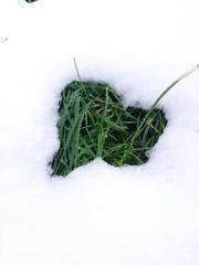 Herz aus Gras im Schnee
