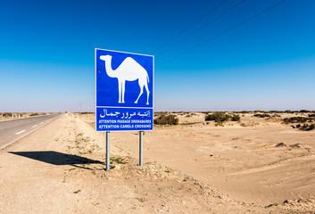 Chebika Oasis in Tozeur, Tunisia