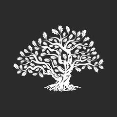 Huge and sacred oak tree silhouette logo badge isolated on dark background