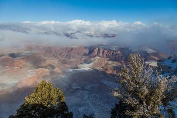 Grand Canyon South Rim Winter Landscape