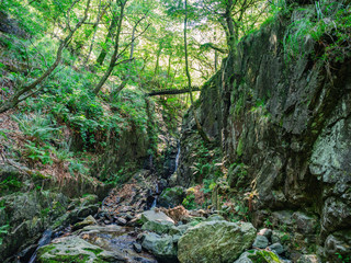 Hiking Trail in Valgrande National Park