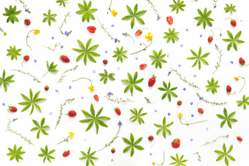 Fototapete - Composition from plants, flowers and red berries, isolated on white background. Strawberry pattern, flat lay, top view. The concept of summer, spring, healthy eating.