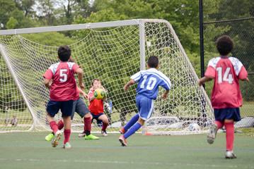 Goalie makes the save