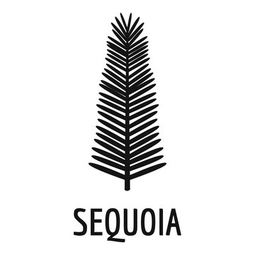 Sequoia leaf icon. Simple illustration of sequoia leaf vector icon for web