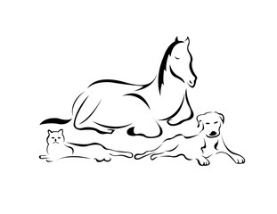Illustration of three domesticated animals, a cat, a dog, and a horse
