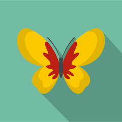 Beautiful butterfly icon. Flat illustration of beautiful butterfly vector icon for web