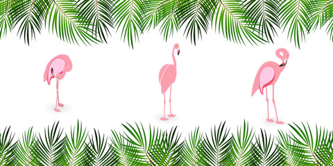 Frame from Palm Leaf with White Background. Vector Illustration.