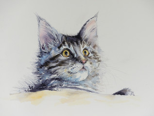 Young cute Maine Coon portrait. Picture created with watercolors.