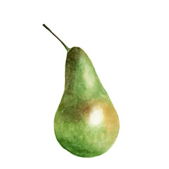 Green pear isolated on white. Watercolor illustration