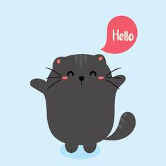 cute cat. hello