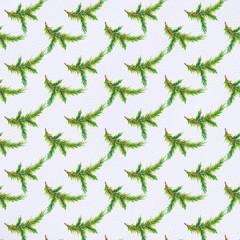 Spruce branch pattern
