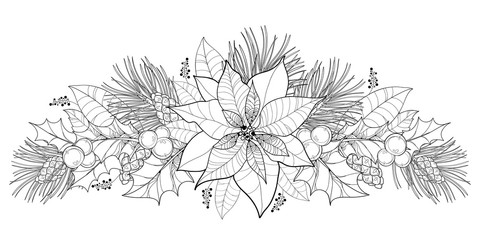 Vector contour Poinsettia flower or Christmas Star in black isolated on white. Horizontal border with outline poinsettia, holly berry, mistletoe, pine and cone for Christmas design and coloring book.