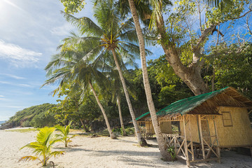 Tropical bungalow, tree and palms on the beach.