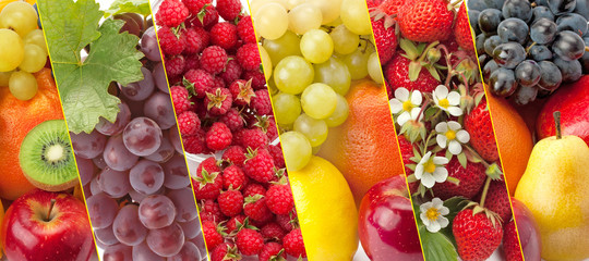 Panoramic collection fresh vegetables and fruits .