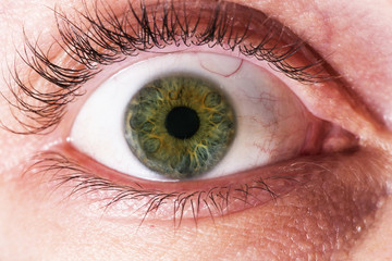 Close-up of green eye of a white person