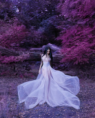 Fragile girl, in a transparent dress. Unreal long hair. The wind wavers the skirt. Artistic Photography