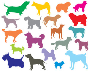 Set of colorful dogs silhouettes-5