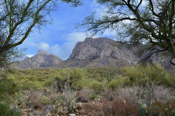 Linda Vista Hiking Trail Oro Valley Arizona