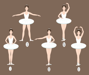 Young dancer performs the five basic ballet positions, demonstrating the correct placement of arms, legs and feet