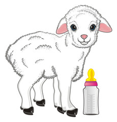 lamb, sheep, cub, baaah, animal, farm, small, curly, illustration, cartoon, toy, stand, bottle, milk