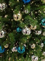 Weihnachtsbaum fotografieren