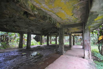 Aluminium Prints Grocery Remains of Japanese military buildings on Eten island in the Truk Lagoon