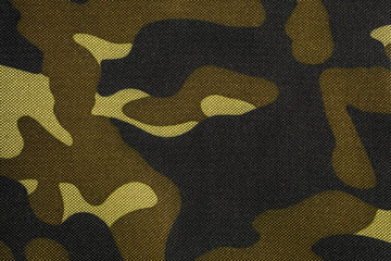 Texture of camouflage fabric. Camo background