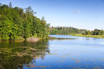 Oredezh River, summer landscape. Russia