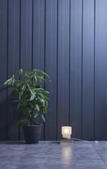 blur room