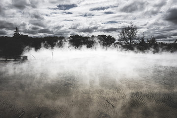 Foto op Plexiglas Misty lake and forest in Rotorua, New Zealand