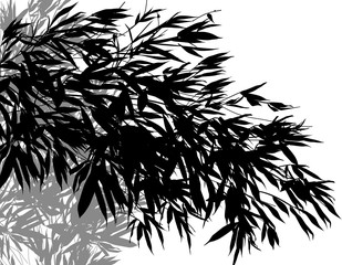 grey and black lush bamboo plants