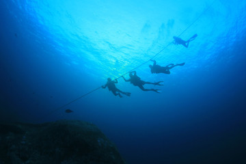 Scuba divers descend buoy line