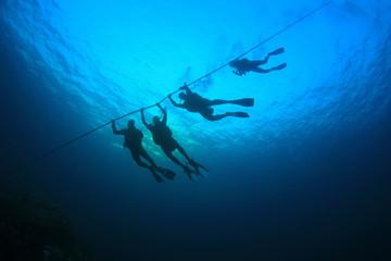 Scuba divers descend buoy line