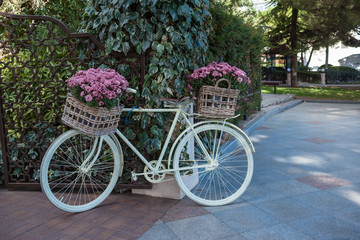 flower bicycle basket, pastel tone