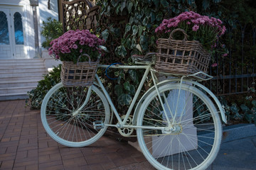 flower bicycle basket, pastel tone