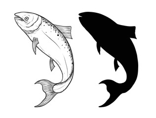 Salmon fish art highly detailed in line art style.Fish vector by hand drawing.Fish tattoo on white background.