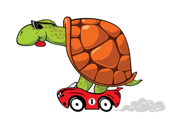 Fun turtle in red sport car