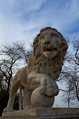 sculptural image of a lion