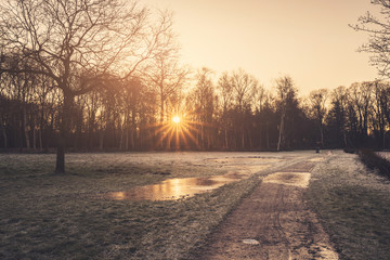 Sunrise in the winter reflecting in a frozen puddle