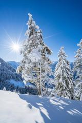 Fototapete - Tief verschneite Winterlandschaft in den Bergen