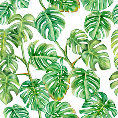 Monstera green. Seamless pattern isolated on white background. Illustration. Watercolor. Template. Handmade