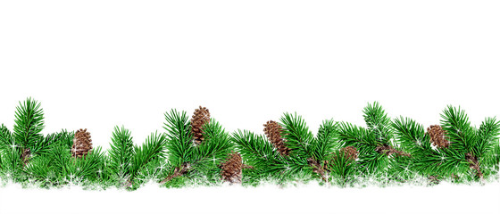 Fir-tree branches on a white background. Christmas scenery.