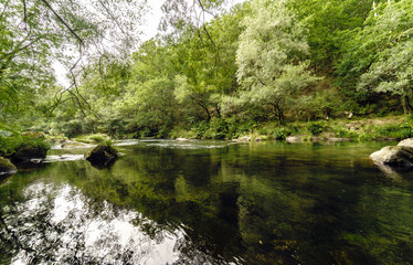 Bucolic image of the river Eume with the banks covered with trees and a very calm stream, in Galicia, Spain.