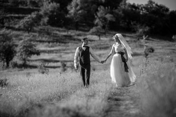 Wedding couple in love. Bride and groom holding hands and walk in park. Marriage concept. Black and white wedding photo