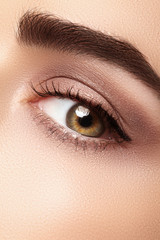 Beautiful macro eye with clean makeup. Perfect shape eyebrows, beige eyeshadows. Cosmetics and make-up. Care about eyes