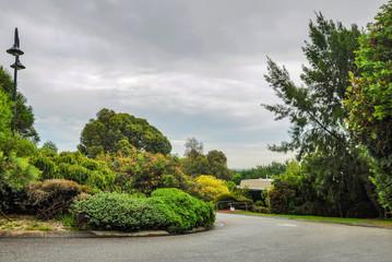 Rainy day in the Park Wilson.  Australia.