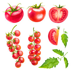 Tomatoes cherry. Watercolor illustrations.