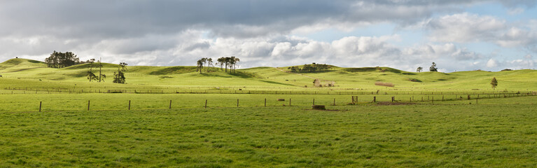 Farm in New Zealand Wall mural